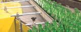 Sector de vidrieras