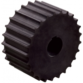KU821 29-40